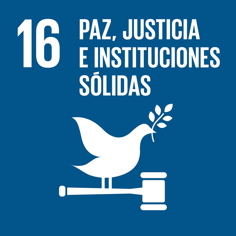 objetivo-paz-justicia-e-instituciones-solidas.png
