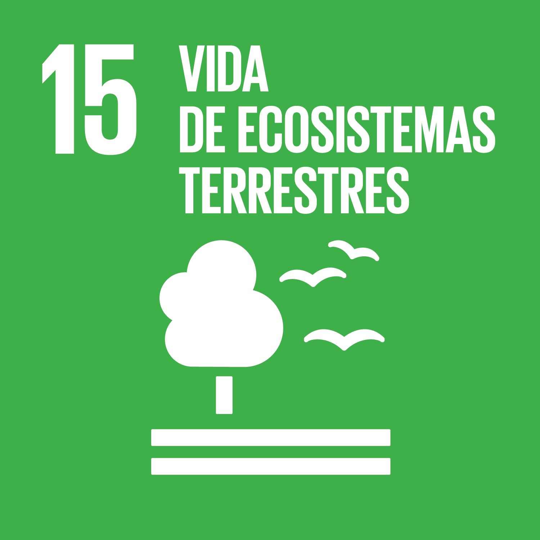 objetivo-vida-de-ecosistemas-terrestres.png