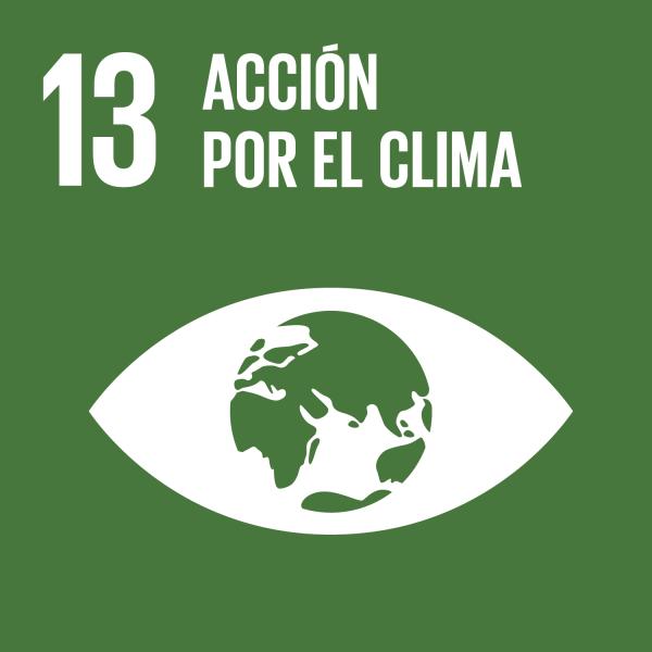 objetivo-accion-por-el-clima.png